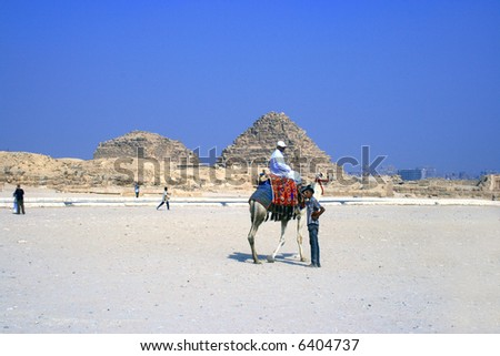 Arabian men in desert on camels