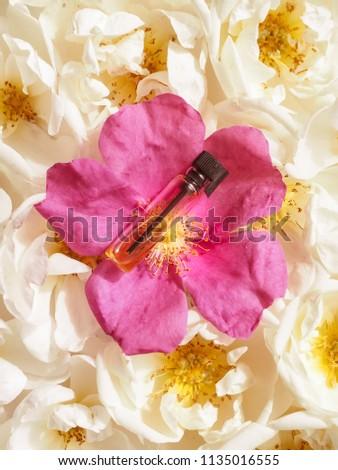 Arabian oud attar perfume or agarwood oil fragrances in mini bottle. #1135016555