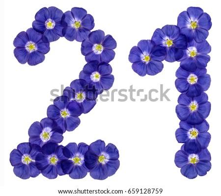Arabic numeral 21, twenty one, twenty, from blue flowers of flax, isolated on white background #659128759
