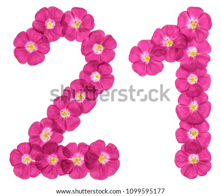 Arabic numeral 21, twenty one, twenty, from pink flowers of flax, isolated on white background #1099595177