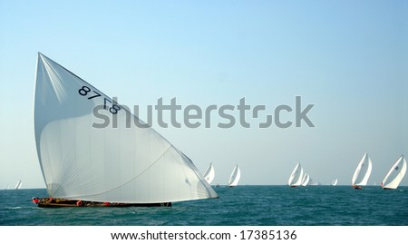 Arabic Wooden Sailing Dhows Competing In The Arabian Ocean