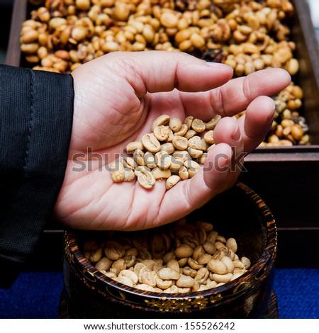 Arabica - coffee arabica - coffee beans - coffee beans by viverridae - coffee seed - ripe