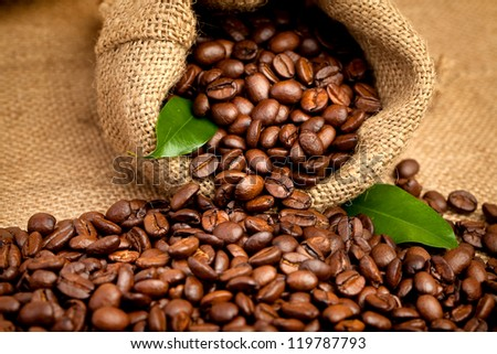 arabica coffee beans in a burlap bag