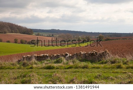 Arable farmland near Taddington, Cotswolds, Gloucestershire, England #1381491944