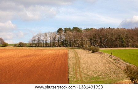 Arable farmland near Taddington, Cotswolds, Gloucestershire, England #1381491953