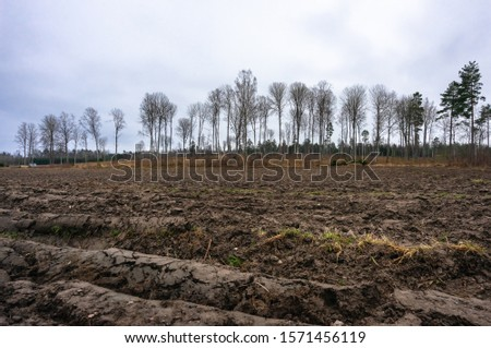 Arable, tillage soil. In early spring the fields are plowed for planting different crops. Silhouettes of bare trees on the edge of the arable land on horizon with cloudy sky. Agriculture.  #1571456119