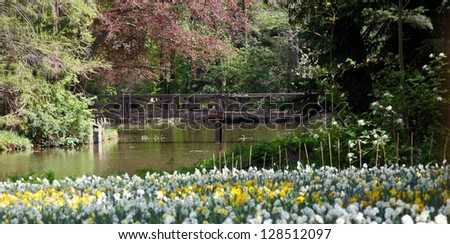 Arboretum in Alcsutdoboz, Hungary. Flowers in the foreground (out of focus), lake with wooden bridge in the background (in focus).