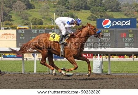"ARCADIA, CA - APR 3: Jockey Joe Talamo punches his fist in victory after he and ""Sidney's Candy"" won the Santa Anita Derby at Santa Anita Park on Apr 3, 2010 in Arcadia, CA."