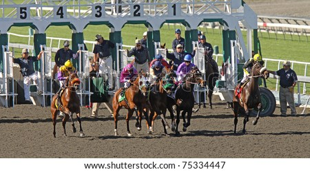 ARCADIA, CA - FEB 10, 2010: A field of thoroughbreds breaks from the gate in a race at historic Santa Anita Park on Feb 10, 2010 in Arcadia, CA.
