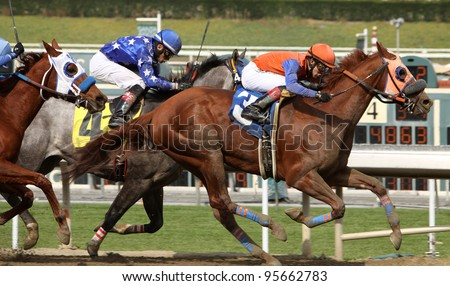 ARCADIA, CA - FEB 19: Apprentice jockey Eswan Flores (orange cap) and Quintons Destiny win the 3rd race at Santa Anita Park in Arcadia, CA, on Feb 19, 2012.