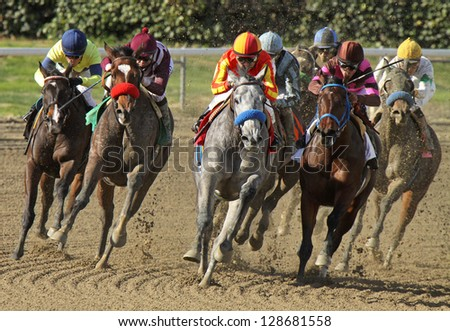 "ARCADIA, CA - FEB 16: Jockey Rafael Bejarano pilots ""Midnight Lucky"" (gray horse) to her first win at Santa Anita Park on Feb 16, 2013 in Arcadia, CA."