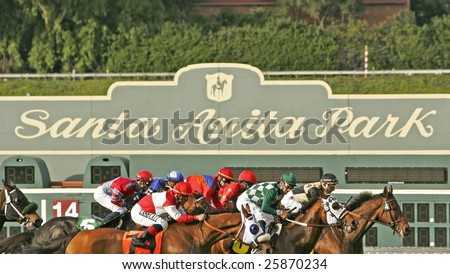 ARCADIA, CA - FEB 28: The field for the Crystal Water Handicap heads down the turf stretch at Santa Anita Park on on Feb 28, 2009 in Arcadia, CA.