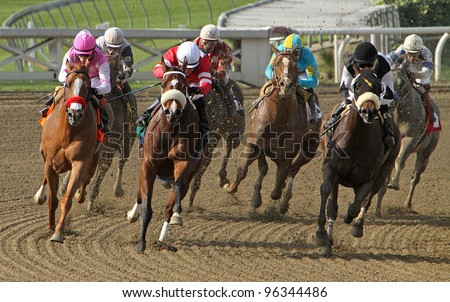 ARCADIA, CA - Feb 25: Thoroughbreds heads down the homestretch in the 5th race at Santa Anita Race Track on Feb 25, 2012 in Arcadia, CA. Eventual winner is Gnarly Dude and Martin Pedroza (black cap).