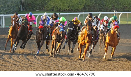 ARCADIA, CA - FEB 10: Thoroughbreds take the turn and head down the stretch in the 8th race at Santa Anita Park on Feb 10, 2010 in Arcadia, CA. Eventual winner, Hiho Geronimo, wears the blue mask.