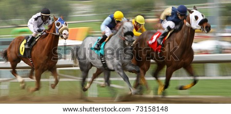 ARCADIA, CA - MAR 12: A field of thoroughbreds storm down the homestretch in a claiming race at Santa Anita Park on Mar 12, 2011 in Arcadia, CA.