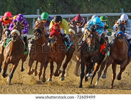 "ARCADIA, CA - MAR 5: Jockeys storm down the homestretch in a maiden race at Santa Anita Park on Mar 5, 2011 in Arcadia, CA. Eventual winner is ""Tiz a Budman"" (Joel Rosario up, center, burgundy cap)."