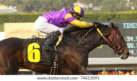 ARCADIA, CA - MAR 12: Premier Pegasus, under jockey Alonso Quinonez, is the easy winner of The San Felipe Stakes at Santa Anita Park on March 12, 2011 in Arcadia, CA.