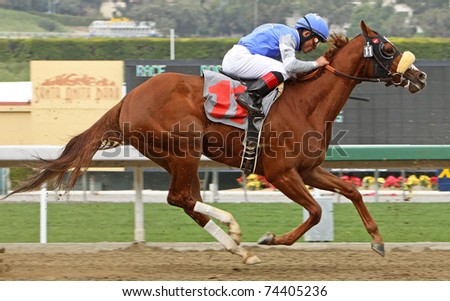 ARCADIA, CA - MAR 12:  Top jockey Joel Rosario competes in a maiden race aboard Titian at Santa Anita Park on Mar 12, 2011 in Arcadia, CA.
