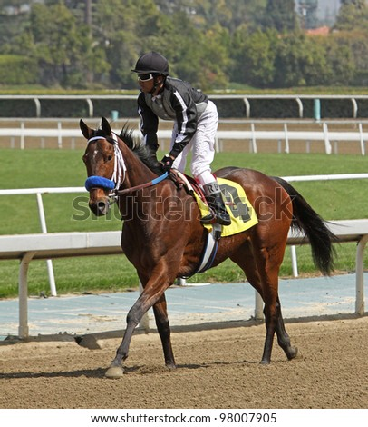"ARCADIA, CA - MARCH 15: Rafael Bejarano and ""Sweetly Peppered"" return to the start after winning the 1st race at Santa Anita Park on March 15, 2012 in Arcadia, CA."