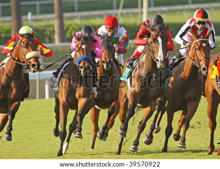 "ARCADIA, CA - OCT 24: The field for the Harold C. Ramser, Sr. Handicap head down the top of the stretch at Santa Anita Park on Oct. 24, 2009, in Arcadia, CA. Eventual winner ""April Pride"" is at far left."
