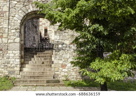 Arch with a tree in an old brick wall inside the Buda royal palace. Hungary, Budapest - Shutterstock ID 688636159