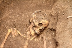 Archaeological discovery of a tomb with an intact skeleton in Taranto, Puglia, Italy