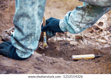 Archaeological excavation. The hands of archaeologist with tools conducting research on human bones, part of skeleton from the ground. Close up image of real process of digger.  Foto d'archivio ©
