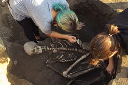 Archaeological excavations.  archaeologist with tools conducts research on human burial, skeleton, skull.