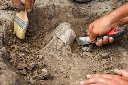 Archaeological excavations, archaeologists work, dig up an ancient clay artifact with special tools in soil