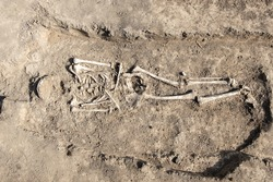 Archaeological excavations. Human remains, bones of skeleton and skulls in the ground tomb.