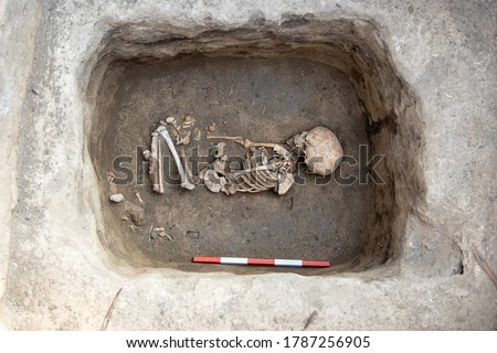 Archaeological excavations. Human remains, bones of skeleton and skulls of 6 year old child in the ground tomb. Foto stock ©