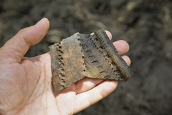 Archaeological find-pieces of ancient pottery