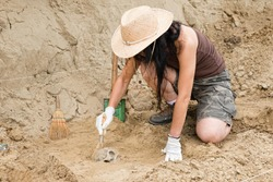 Archaeologist working in field, carefully revealing ancient skull