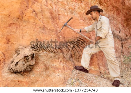 Archaeologist works on an archaeological site with dinosaur skeleton in wall stone fossil tyrannosaurus excavations. Foto d'archivio ©