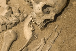 Archaeologists excavated the skeleton of a man of bones and skull with an open mouth in the ground. Prehistoric, Caveman
