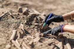 Archaeology - excavating ancient human remains with digging tool kit set at archaeological site.