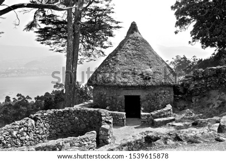 archeological site south of galicia, castreña culture, and artistic historical monument, and well of cultural interest. It was in its time a Galician town, with Celtic cultures