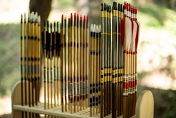 Archer's set.  Diverse wooden arrows with feathers of different colors