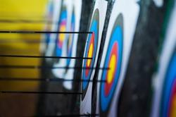 Archery. Arrows in archery target on archery range
