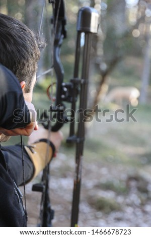 Archery in the forests around Seefeld (Austria) aiming at a fake deer #1466678723