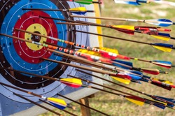 Archery target with arrows on it