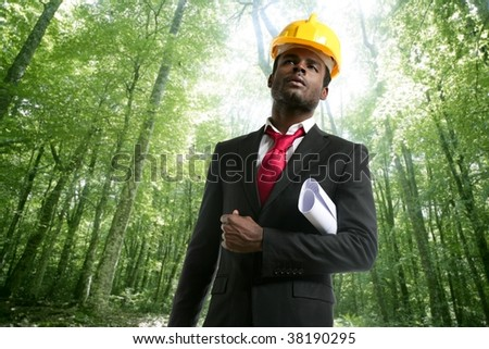 Architect with plans and helmet in an ecological forest project [Photo Illustration]