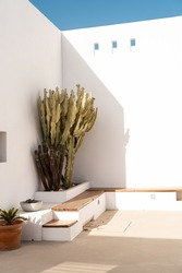 Architectural detail of bench to sit with cactus in corner of interior patio in mediterranean house in desert by the sea in summer