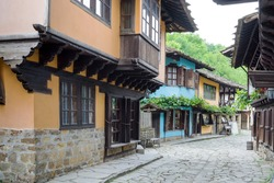 Architectural ethnographic complex