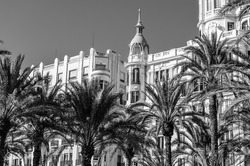 Architecture and palm trees in the Mediterranean city of Alicante, Spain; black and white image