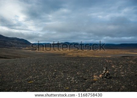 Arctic autumn  tundra  and black desert in the central wasteland in Iceland. Central highlands.  Road to Askja volcano. September.  #1168758430