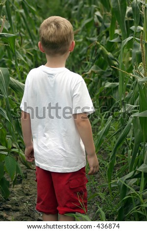 Are We Lost?  A child standing in a corn field - stock photo