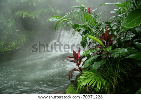 Arenal Hot Springs - Costa Rica