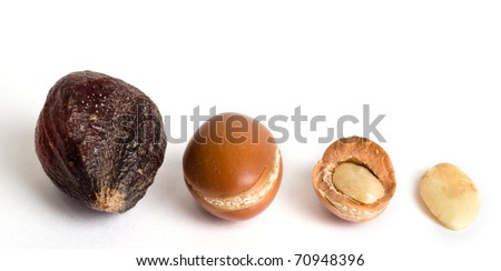 Argan fruits with their almond inside