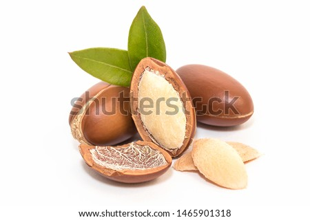 Argan nuts on white background #1465901318